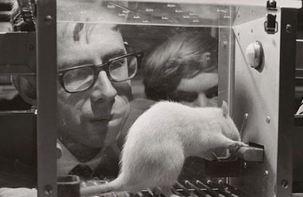 Frank Rosenblatt en uno de sus descubrimientos